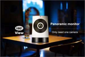 CCTV 180 Degree WiFi Wireless Fisheye Panoramic Plug and Play IP Network Camera pictures & photos