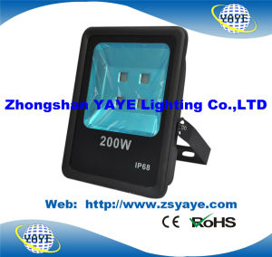 Yaye 18 Hot Sell Ce/RoHS 300W COB LED Flood Light/ COB LED Floodlight with 3/5 Years Warranty pictures & photos
