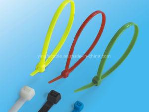 Cable Tie Mounts pictures & photos