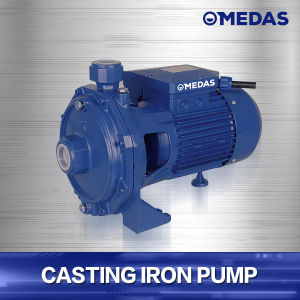 Cpm170 Large Flow Cast Iron on Ground Water Pump pictures & photos