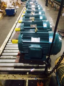 Y2 Series Three-Phase Induction Motor pictures & photos