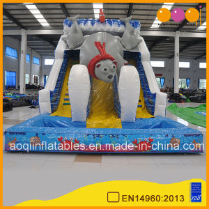 Ocean Inflatable Wet Pool Slide Polar Bear Beach Inflatable Water Slide (AQ01597-2) pictures & photos