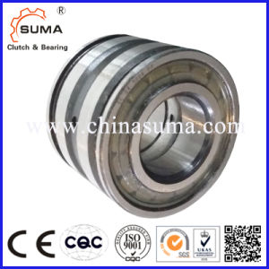 Cylindrical Roller Bearing SL04 5044PP pictures & photos