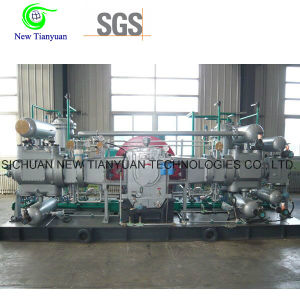5500nm3/H Displacement Gas Compressor for Gas Station