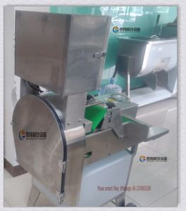 FC-305 Ce Approved Celery Cucumber Vegetable Cutting Slicing Machine pictures & photos