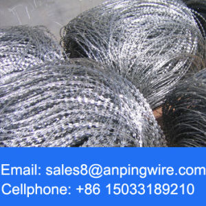 Galvanized Concertina / Spiral Type of Razor Barbed Wire pictures & photos