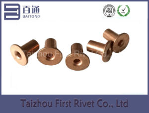 5X8mm Copper Plated Flat Head Full Tubular Steel Rivet pictures & photos