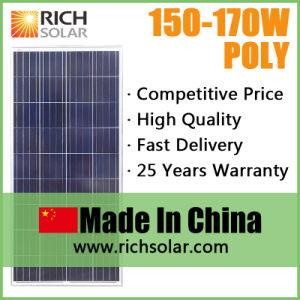 150W Polycrystalline 12V Solar Panel