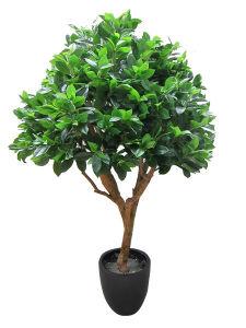 Home Decorations Artificial Bonsai Plants pictures & photos