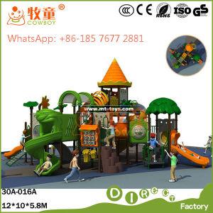 Kids Outdoor Playground Amusement Park (MT/WOP-046B) pictures & photos