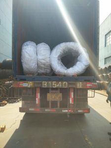 Safs Steel Wire 10b21 for Making Nuts pictures & photos