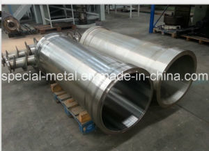 Horizontal Spiral Separator Parts SS316L pictures & photos