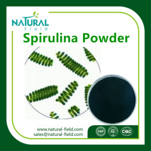 Best Quality Spirulina 60% Protein Powder pictures & photos