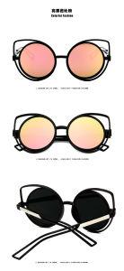 Metal Glasses Polarized Sunglasses Designer Cat Eyes Sunglasses pictures & photos