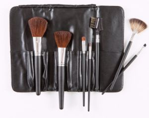 Cheap Nylon Hair Makeup Brush Set pictures & photos