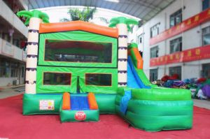 Original Design Inflatable Jumping Boucer Castle with Slide Combo (CHB706-1) pictures & photos