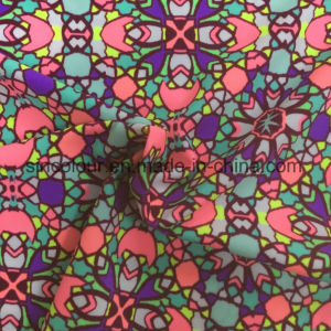 Swimwear Fabric for Bikini pictures & photos