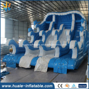 Hot Sale Giant Inflatable Water Slide /Outdoor Wet & Dry Slide / Exciting Slide for Amusement Park