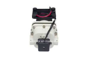 New Flojet DC Diaphragm Pump / New Shurflo Pump / High Pressure / Big Flow pictures & photos