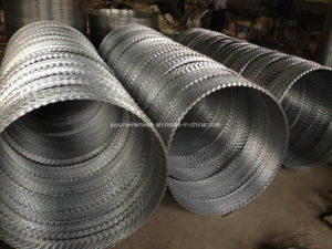 Cbt-65 Razor Wire for Hot Sale in Sharp and Strong Quality pictures & photos