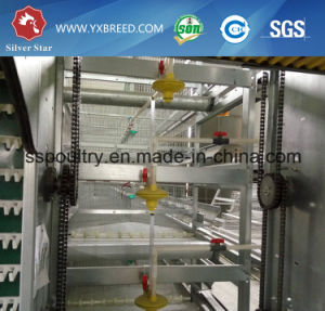 H Type Chicken Cages Poultry Equipment pictures & photos