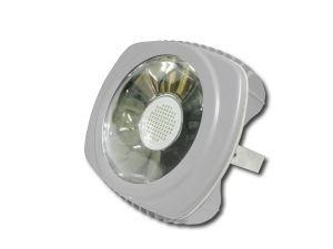 Best-Selling 5 Years Warranty IP65 100W LED Flood Light