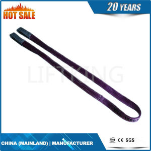 Flat Webbing Sling Fs Series pictures & photos