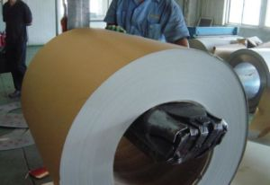 High Quality Anti-Corrosion PPGI Coil/Sheet (0.13-1.2) * (600-1250) Factory Price pictures & photos