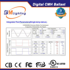 315 Watt HID Grow Light Digital Magnetic Ballast with UL, LED Display pictures & photos