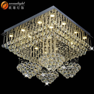 Ceiling Light Cover Ceiling Light Fixtures China Indoor Ceiling Lamp Om66131 pictures & photos