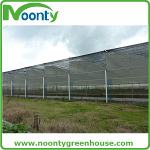 Hot Sale 65%-90% Sun Shading Net/Sun Shade Net Price/Black  Sun Shade Net for  Greenhouse pictures & photos