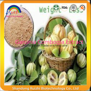 Garcinia Combogia Extract (HCA) 50%/60% pictures & photos