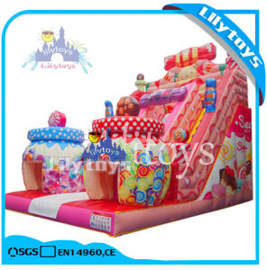 Hot Inflatable Bouncer Castle with Air Blower (Lilytoys-New-027) pictures & photos