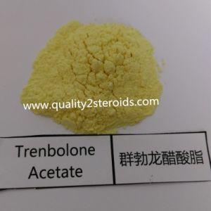 Tren Ace Trenbolone Acetate Powder for Long-Term Cooperation pictures & photos