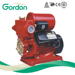 Copper Wire Electronic Pressure Switch Water Pump with Check Valve pictures & photos
