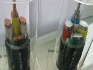 0.6/1kv Cu/Al Conductor XLPE Insulated Power Cables with Steel Wire Armored pictures & photos