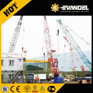 250 Ton Crawler Crane Sany Brand for Sale Scc2500c pictures & photos