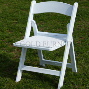 Outdoor Garden Design Dining Plastic Folding Chair Price (SZ-FCT001) pictures & photos