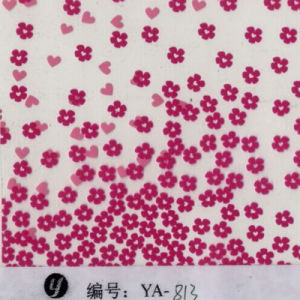 Tsautop 0.5/1m Width Flower Hydro Dipping Film Water Transfer Printing Film PVA pictures & photos