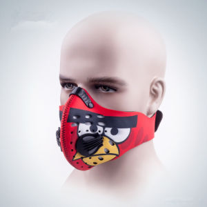 Dust Prevention Face Mask with Angry Birds Pattern (AM013) pictures & photos
