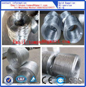 Building Material Galvanized Iron Wire/Bwg20-22 Galvanized Binding Wire for Construction pictures & photos