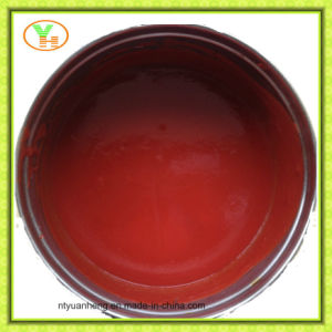3kg*6 Canned Tomato Sauce Ketchup OEM Halal Kosher pictures & photos