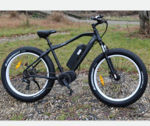 48V 10ah Electric Bicycle for Mountain Touring pictures & photos
