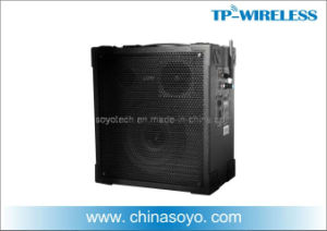 2.4GHz Digital Wireless PA Speaker pictures & photos