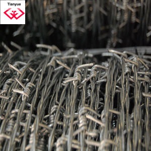 Galvanzied Construction Barbed Wire (TYH-048) pictures & photos