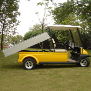 Tool Function Golf Cart (A1H2)