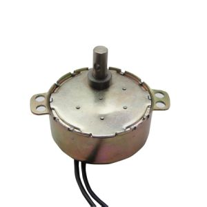 Synchronous Motor (49TYZ) pictures & photos