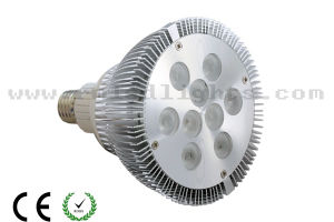 Dimmable PAR38 LED Lamps (RM-PAR38-9)
