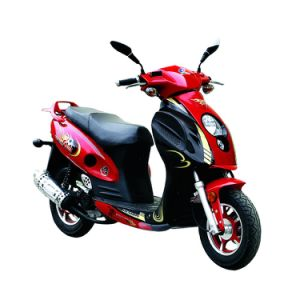 New Gas Scooter (JD50QT-16) Economical