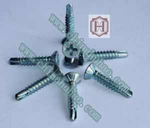Screw/White Color Zinc Coated Phillips Drive Self Drilling Screw pictures & photos